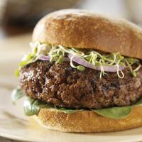 organic grass fed beef burger