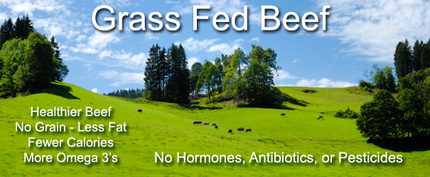 Buy Grass Fed Beef
